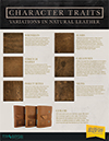 leather characteristics flyer